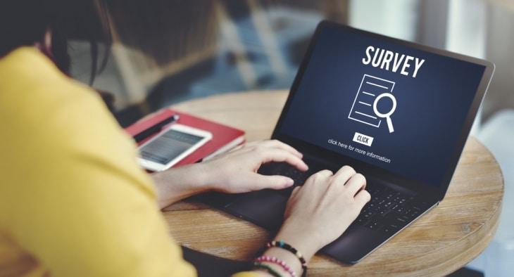 MoneyMagpie_Online-Survey-Woman-Laptop-e1491234398351